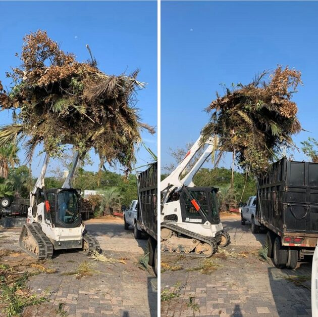 Emergency Tree Services Mary Esther