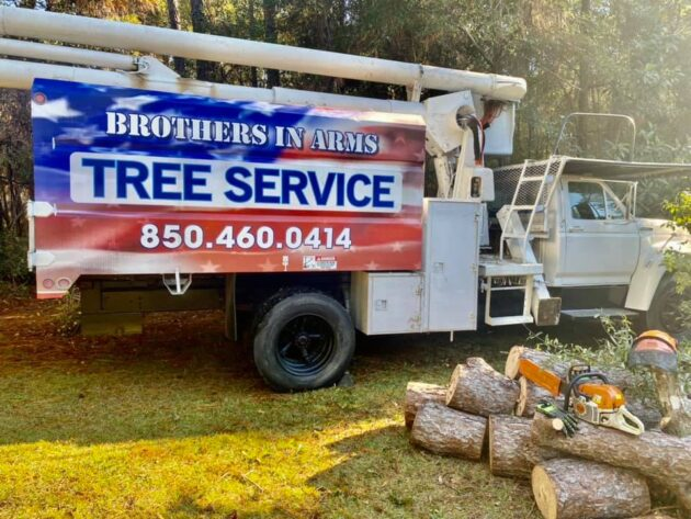 destin tree removal