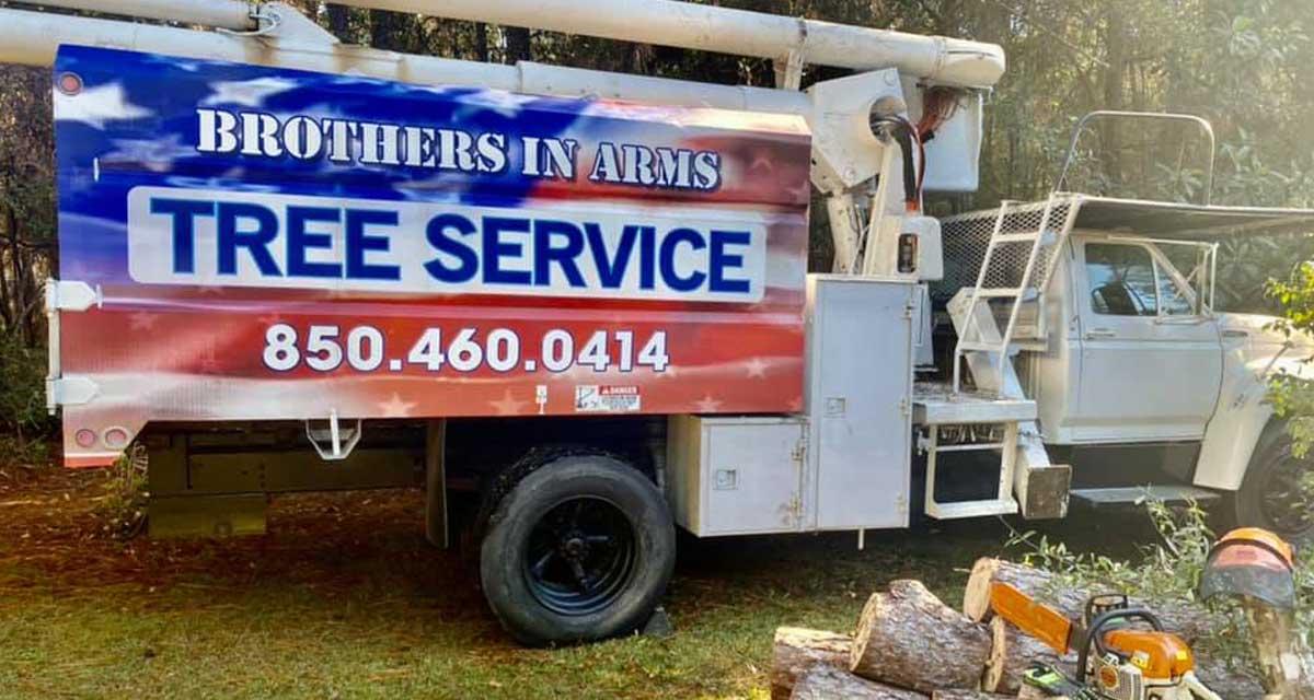tree removal service Niceville fl