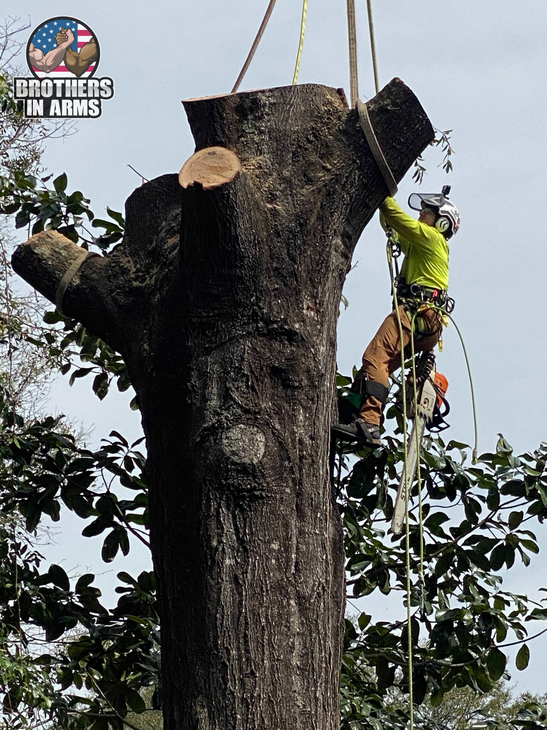 fort walton beach tree service