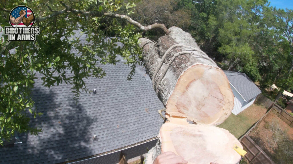 Tree Removal Service Crestview